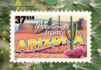 GREETINGS FROM ARIZONA POSTCARD PUZZLE( 5 PACK )
