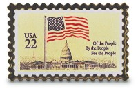 Flag Over Capitol Stamp Pin